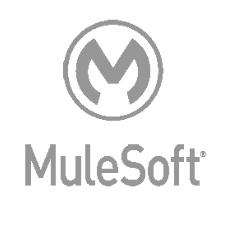 Mulesoft Logo3
